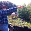 """יערות, ג'יפים וסוסים ב""""מקום בלב"""" באבירים, בגליל העליון"""