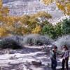 מסלול טיול מומלץ בנגב: במעלה הנחל בעין עבדת