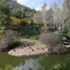 """גן החיות התנכ""""י – הפילה, הנמר הלבן והפינגווינים מחכים לכם גם בשבת"""