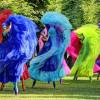פסטיבל הצגות הילדים הבינלאומי בחיפה בפסח והשנה – גם הצגות לנוער!