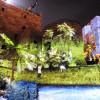 אטרקציה משפחתית בירושלים: החיזיון אור קולי במגדל דוד – בלי מילים…