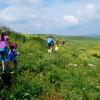 פעילות משפחתית חורפית בעמק המעיינות: מסלולי הליכה ואטרקציות