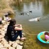 מה לעשות עם הילדים בערבה בחג הפסח