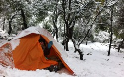 על הר מירון, בשלג, באוהל…