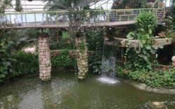 פארק אוטופיה – אטרקציה טרופית עם סחלבים, מפלי מים והמון לחות בשרון…