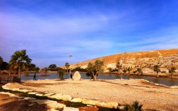 פארק גולדה – פיקניק משפחתי, צל, דשא ומים בנגב המערבי