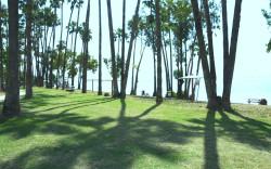 """חוף חוקוק בכינרת – משפחתי וזוכה """"חוף דגל כחול"""", אך לא תמיד מטופח *"""