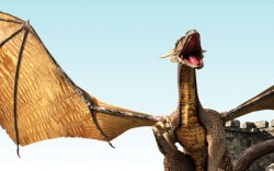 מבוכים, דרקונים, אבירים ועוד – הקיץ במגדל דוד