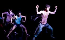 להקת המחול קמע מציעה: מופעי תיאטרון מחול למבוגרים, לילדים ולצעירים