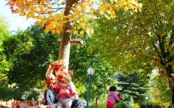 הסתיו בפתח: סיורי שלכת לכל המשפחה במרום גולן