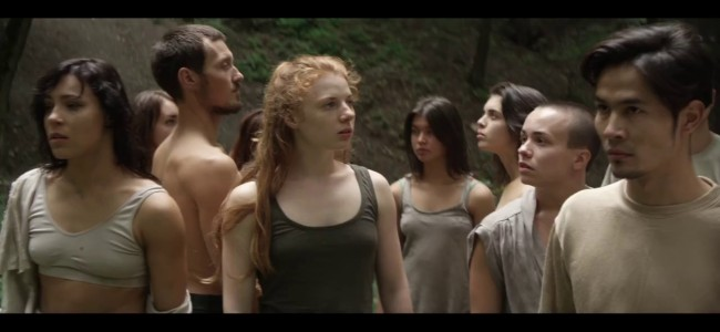 PINE – יצירת וידאו קליפ מקורית של אריה קישון