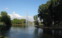 יום כיף משפחתי ברמת גן: הספארי, הפארק הלאומי ומוזיאון האדם והחי (גם בימי קורונה). שבילים, פינות משחק לילדים ושני בתי קפה בתוך הפארק.