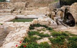 """עין חניה – בילוי לכל המשפחה ב""""פארק המעיינות"""" שבדרום ירושלים"""