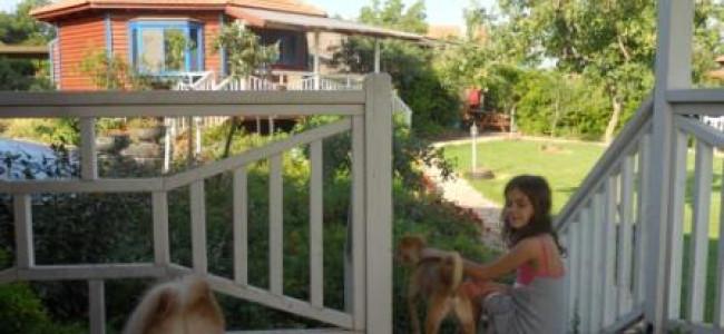 צימרים ומלונות ידידותיים לכלבים בגליל המערבי