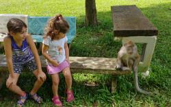 """""""תאילנד בכיוון אחד"""" – פרק ג': אגם קאוסוק הקסום וילדה אחת פצועה…"""
