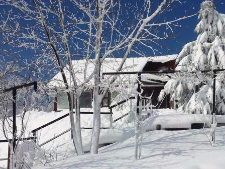 1125 snow