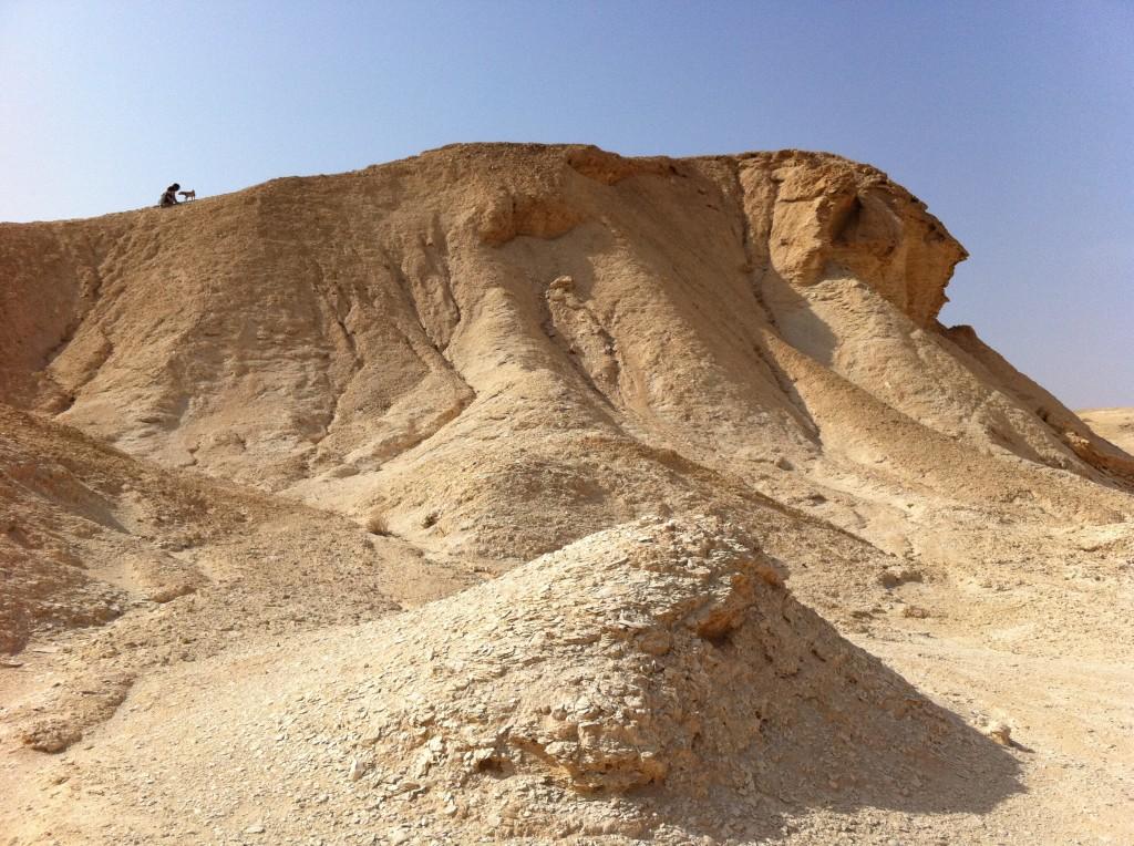 המדבר במרחק נגיעה. ילד, ילדה וכלב על מצוק מול הישוב צוקים