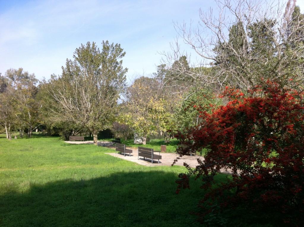 בכל עונה מתחלפים צבעיו של הפארק