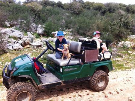 abirim jeep(75)