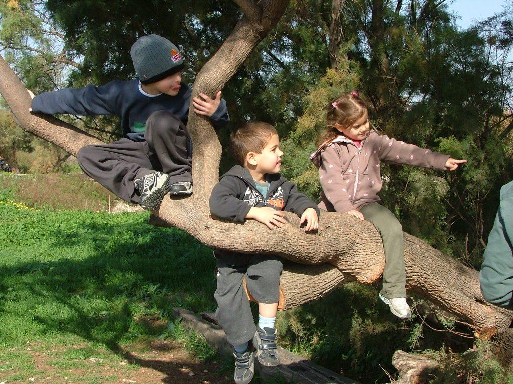 ואין כמו טיפוס קבוצתי על גזע עץ ששמח לשתף פעולה