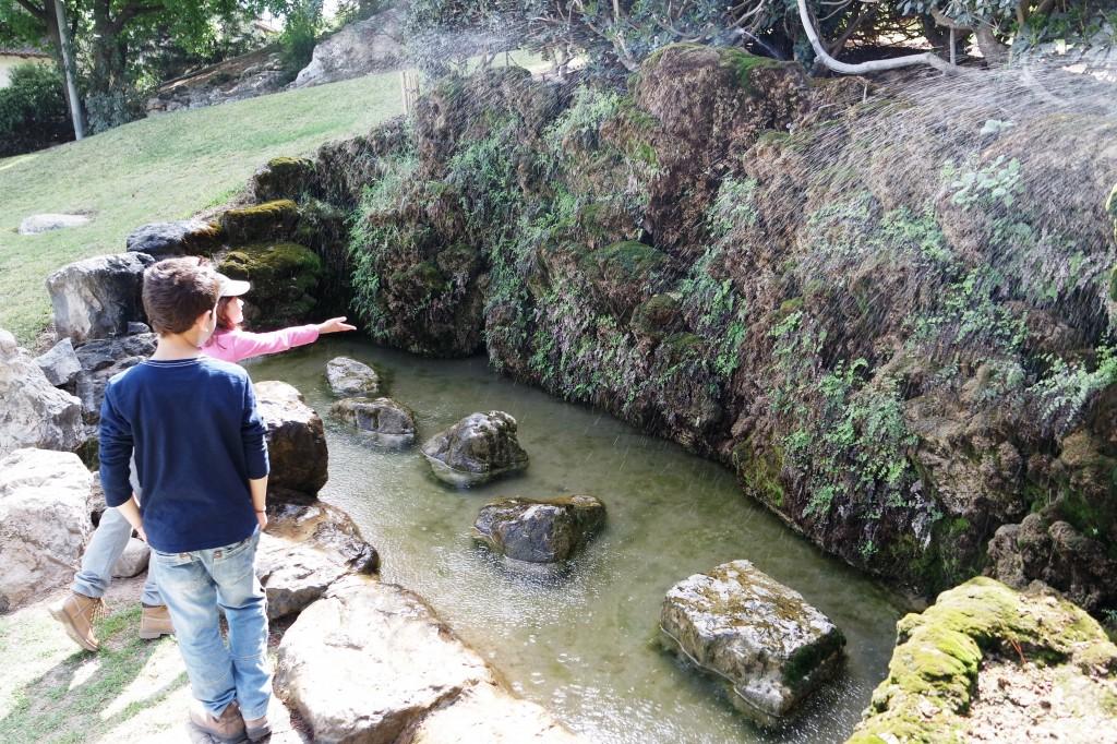 אביב 15 מרץ גלבוע גן יפני דג דגן ברקנית מגן שאול (207)