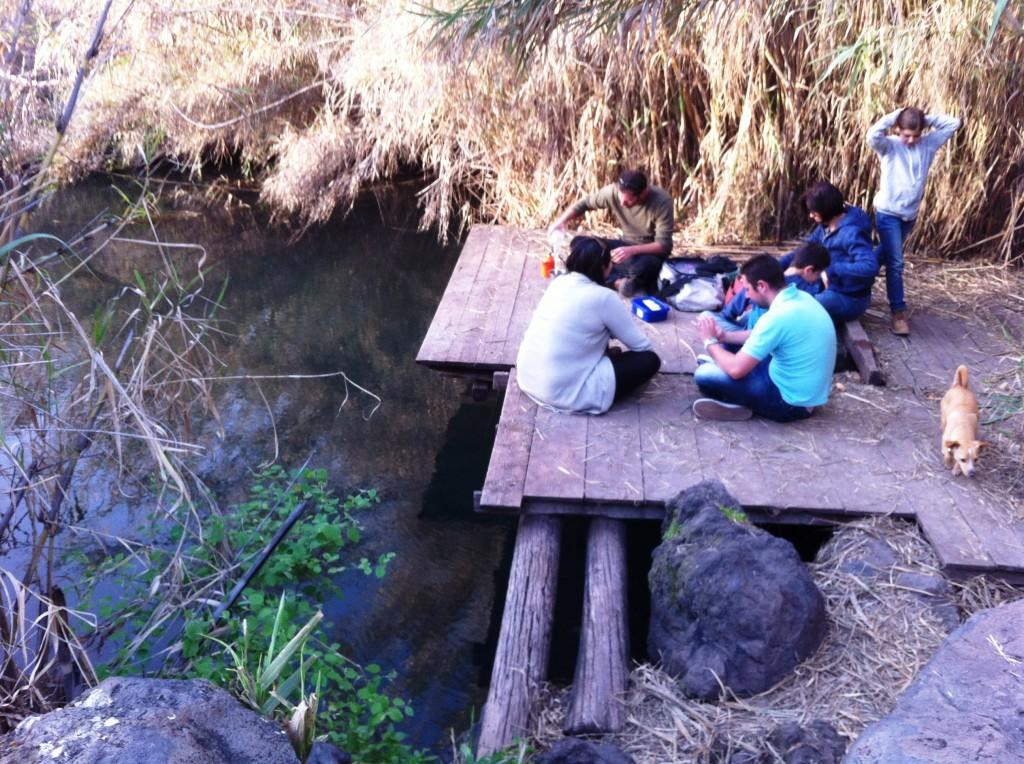 הפסקת תה על מזח שבנחל עורבים ברמת הגולן. אפשר גם להשתכשך במים.