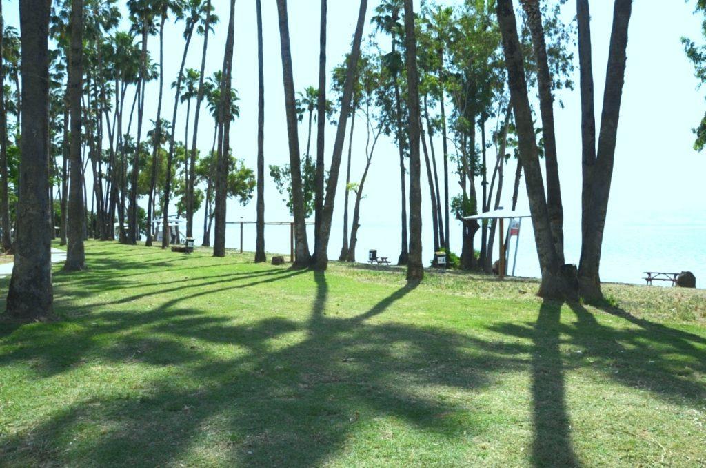 בדרך לרמת הגולן, או לאצבע הגליל, אפשר לעשות הפסקת טבילה איכותית בחוף השמור.