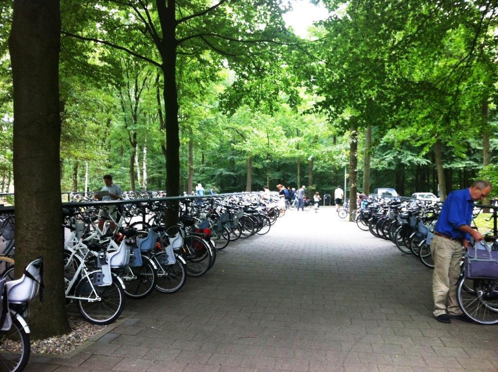 בחר לך ולילדיך אופניים בגודל המתאים, וצא לדרך...