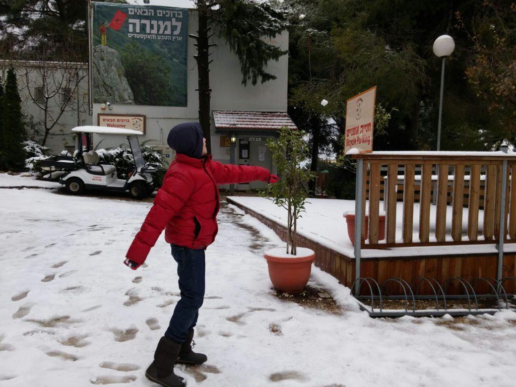 שלג במנרה לודג'. צילום: מיקי מ.