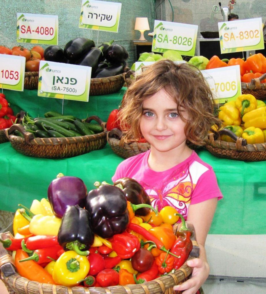 תערוכה חקלאית בערבה1