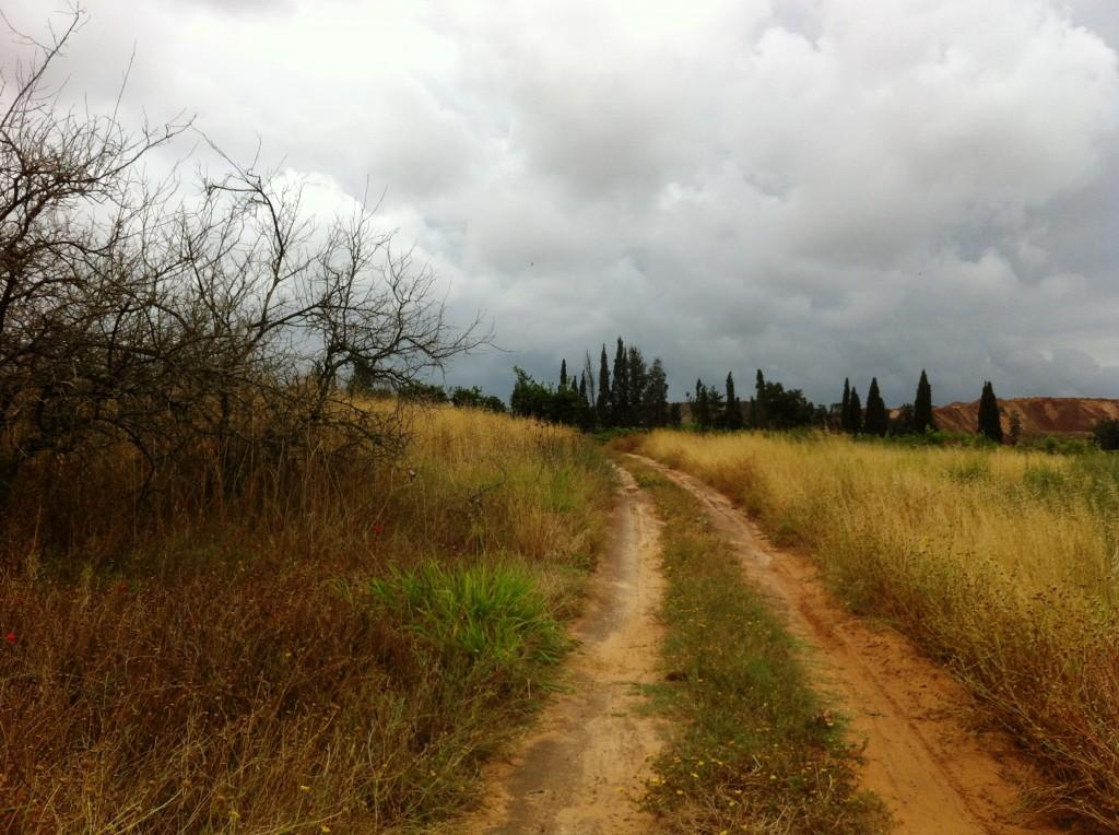 נוף ישראלי בשלהי הסתיו