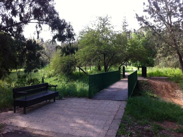 גשרון ירוק ואחרי הגשם - גם נחל מפכה...