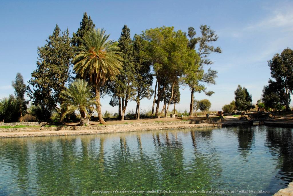 מרחבים, מים, עצים ונוף בעמק המעיינות ליד בית שאן.