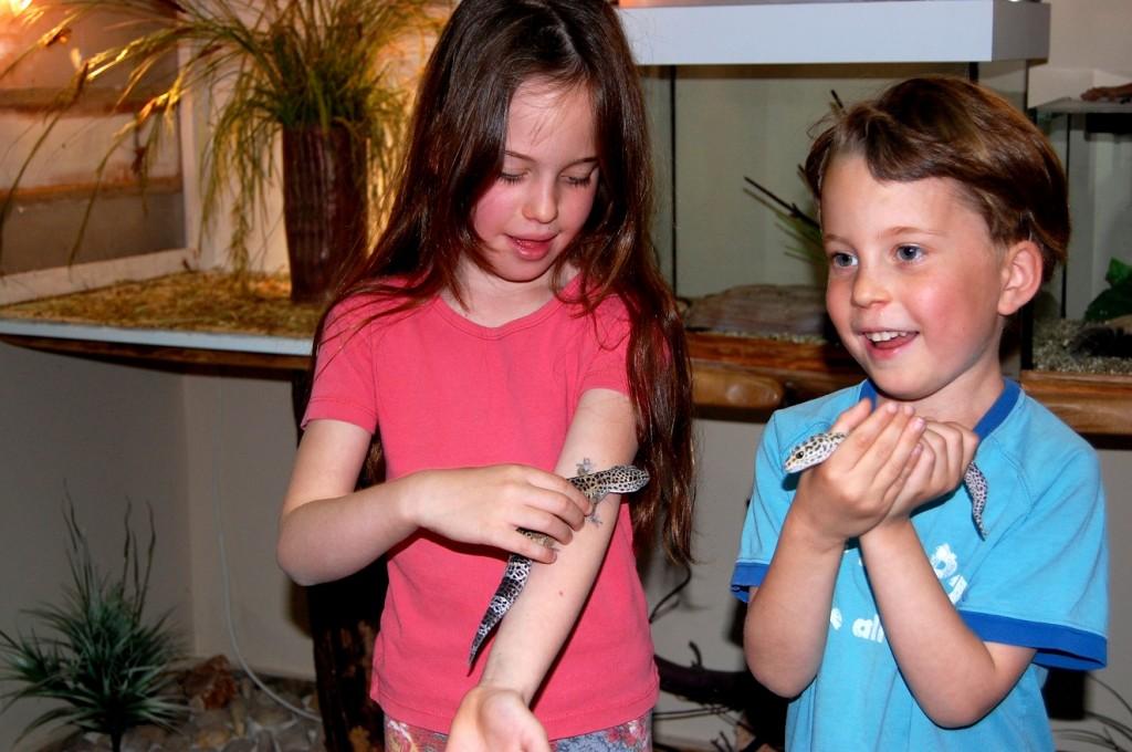ילדים במרכז זוחלים וחרקים