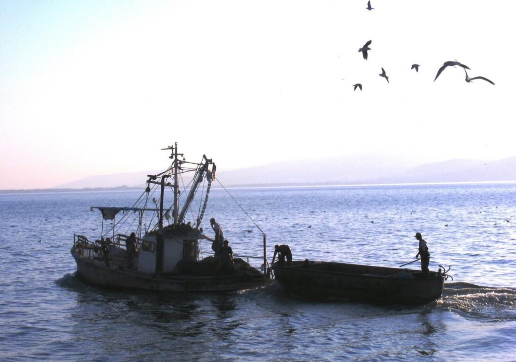 דייגי עין-גב בכנרת צילום תקשורות