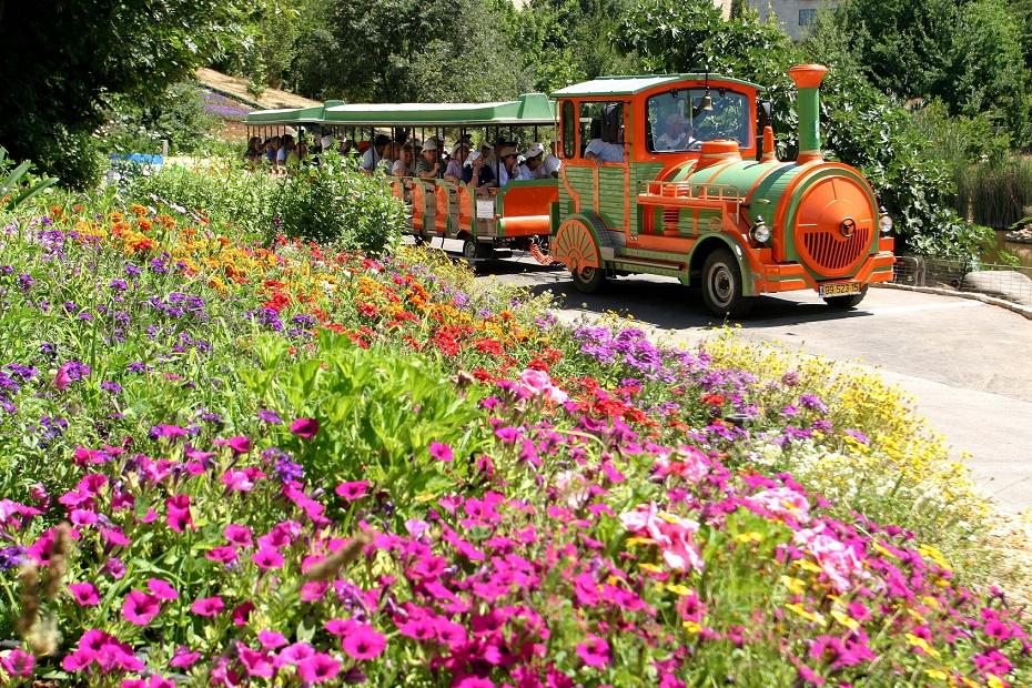 רכבת הילדים בגן הבוטני בירושלים.
